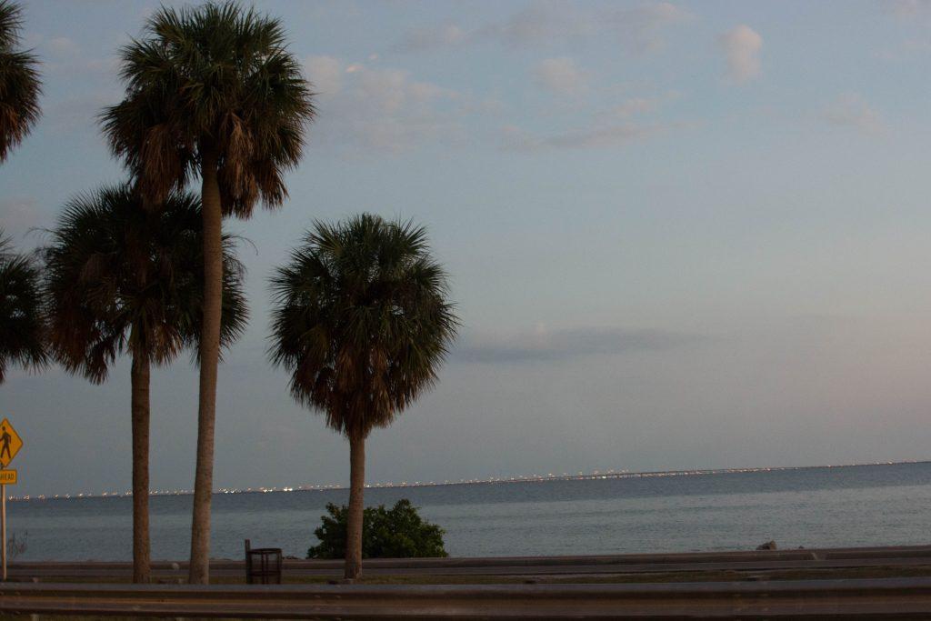 [Floride] Jour 2 : Le jour d'avant 225
