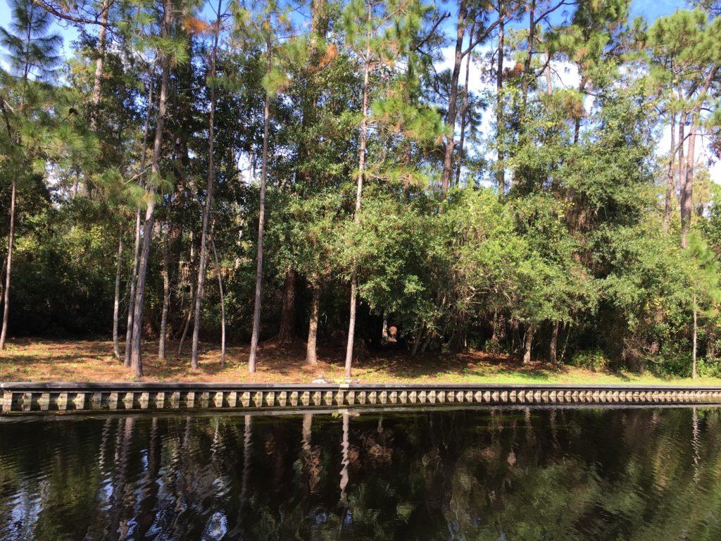 """[Floride] Jour 7 : Une journée """"au feeling"""" - Partie 1 195"""