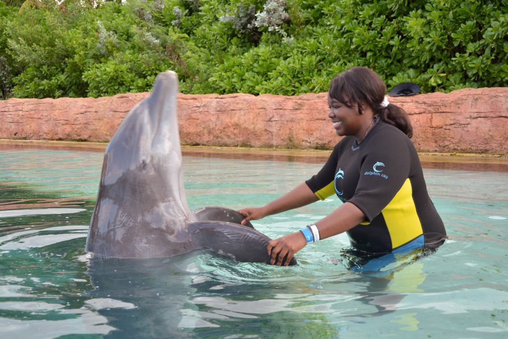 [Floride] Jour 9 : Au coeur des Bahamas - Partie 3 54