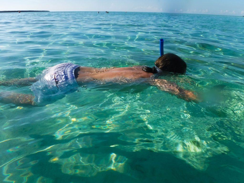 [Floride] Jour 10 : Un petit bout de paradis sur Terre - Partie 2 96
