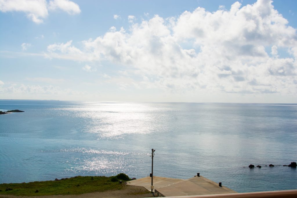 [Floride] Jour 10 : Un petit bout de paradis sur Terre - Partie 1 120