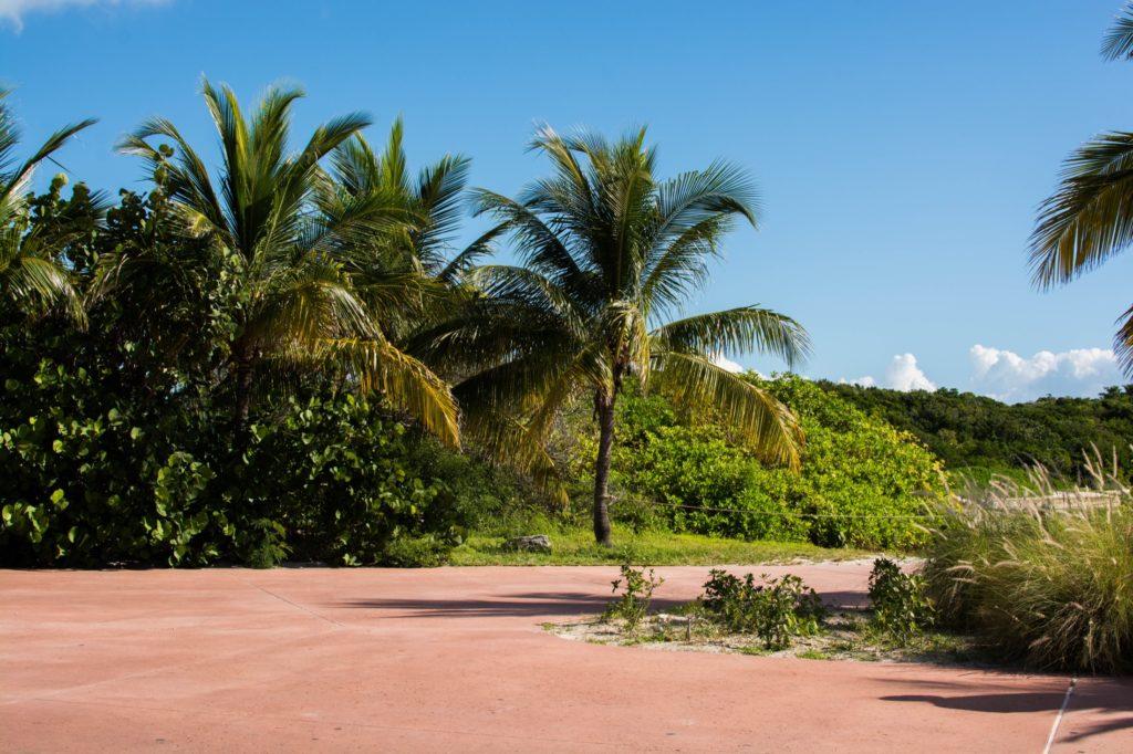 [Floride] Jour 10 : Un petit bout de paradis sur Terre - Partie 1 141