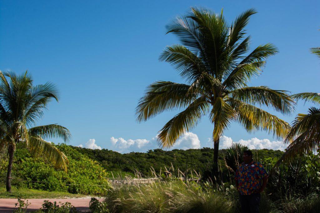 [Floride] Jour 10 : Un petit bout de paradis sur Terre - Partie 1 142