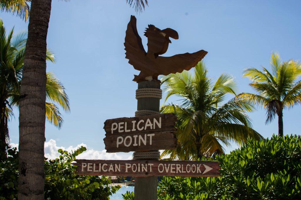 [Floride] Jour 10 : Un petit bout de paradis sur Terre - Partie 1 143