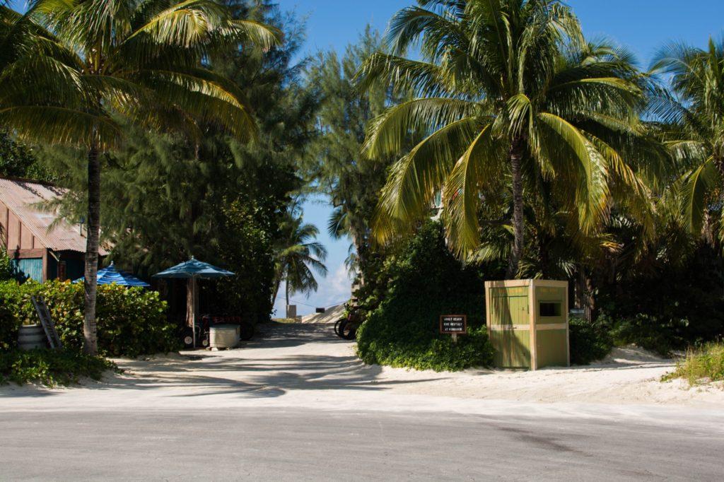 [Floride] Jour 10 : Un petit bout de paradis sur Terre - Partie 1 151