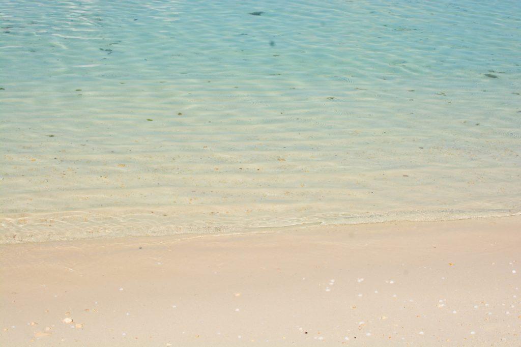 [Floride] Jour 10 : Un petit bout de paradis sur Terre - Partie 1 154