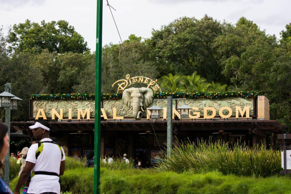 [Floride] Jour 13 : De la Nouvelle-Orléans au charme victorien - Partie 2 126