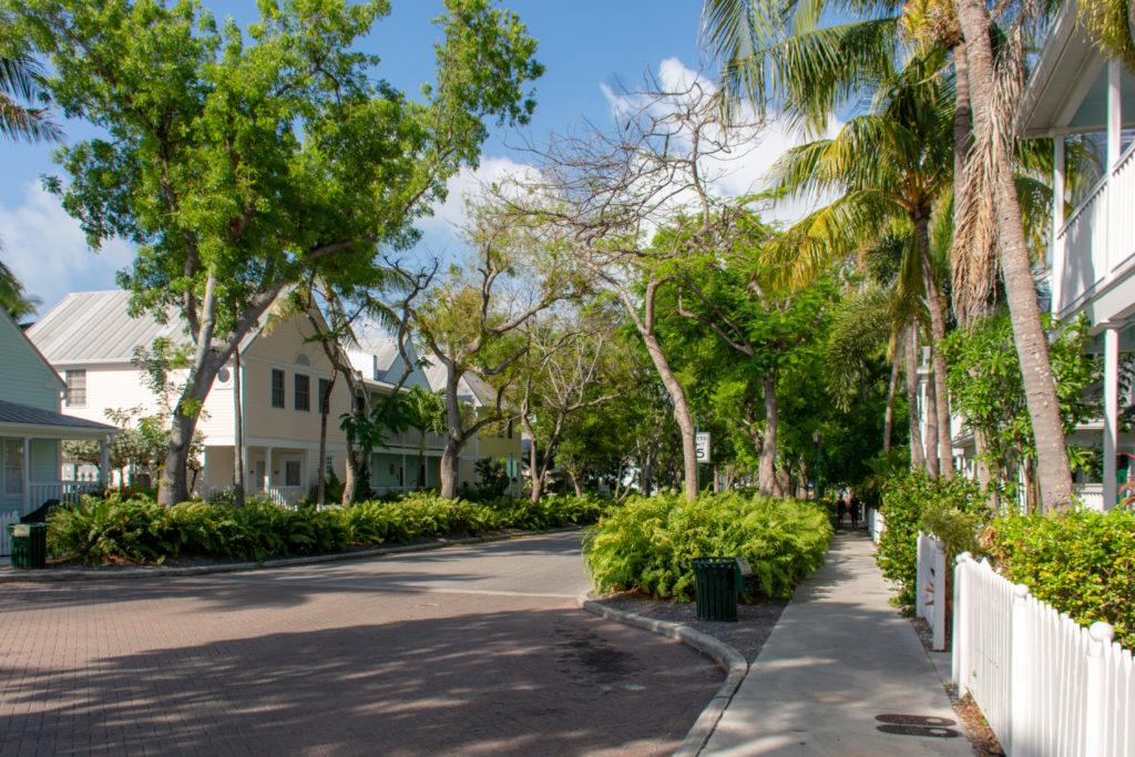 [Floride] Jour 4 : Escale à Key West – Partie 1 31