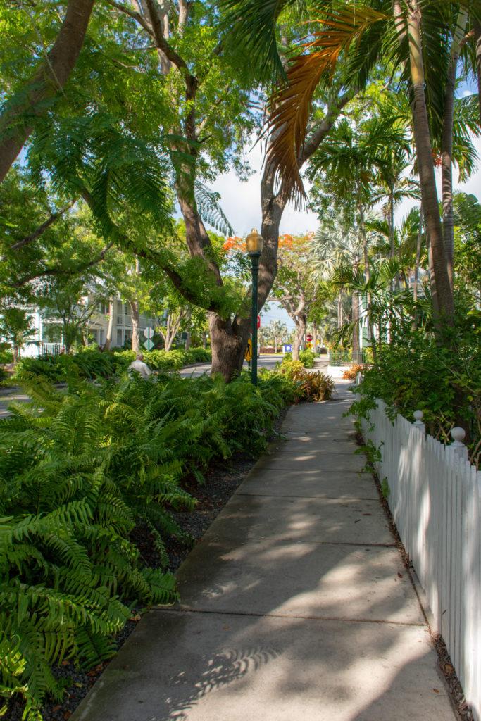 [Floride] Jour 4 : Escale à Key West – Partie 1 32