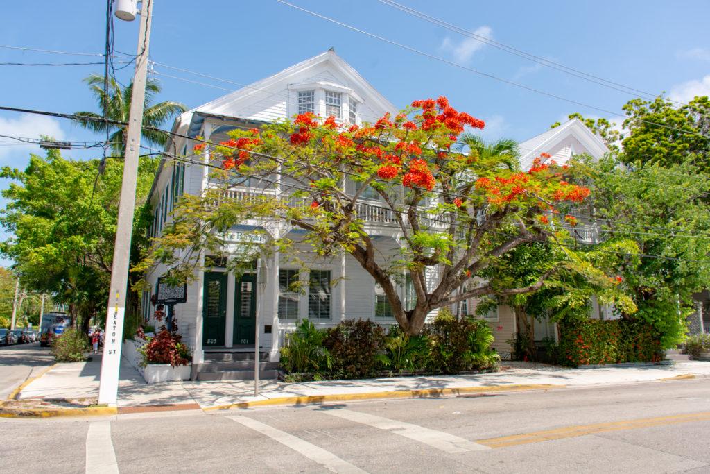 [Floride] Jour 4 : Escale à Key West – Partie 1 24