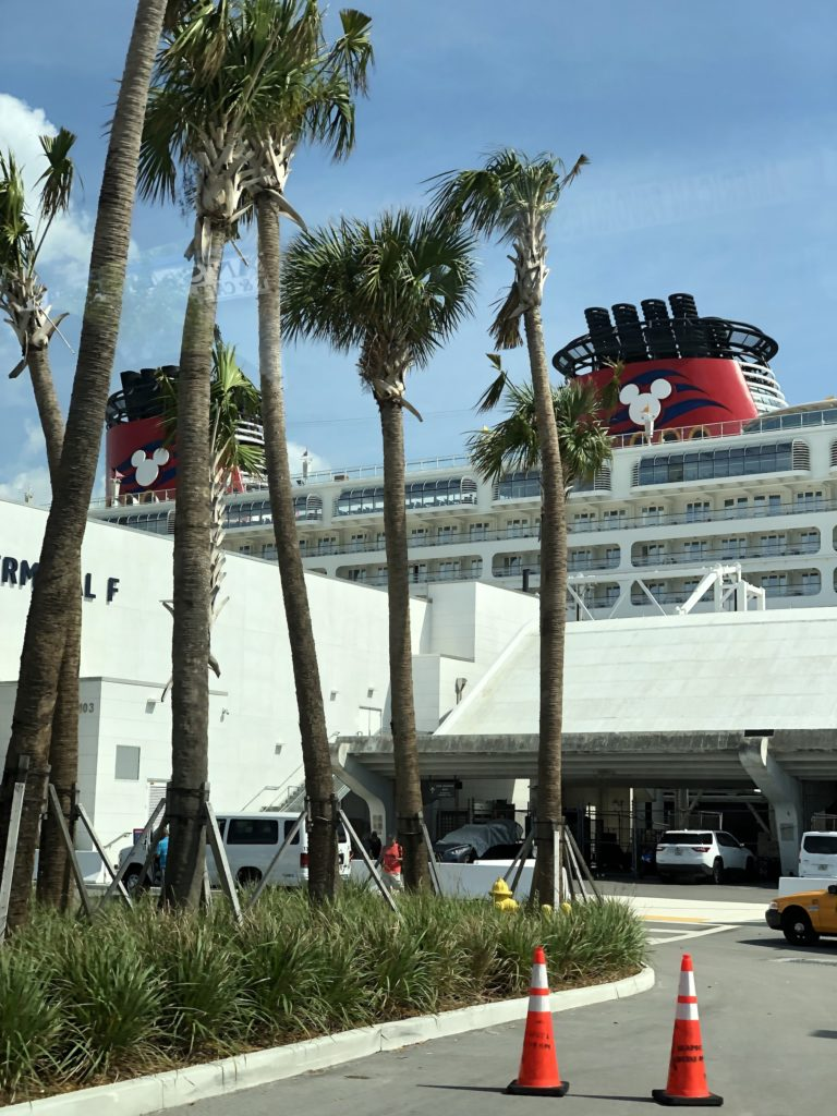 [Floride] Jour 3 : It's time to cruise - Partie 1 14