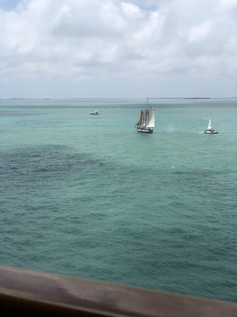 [Floride] Jour 4 : Escale à Key West – Partie 2 24