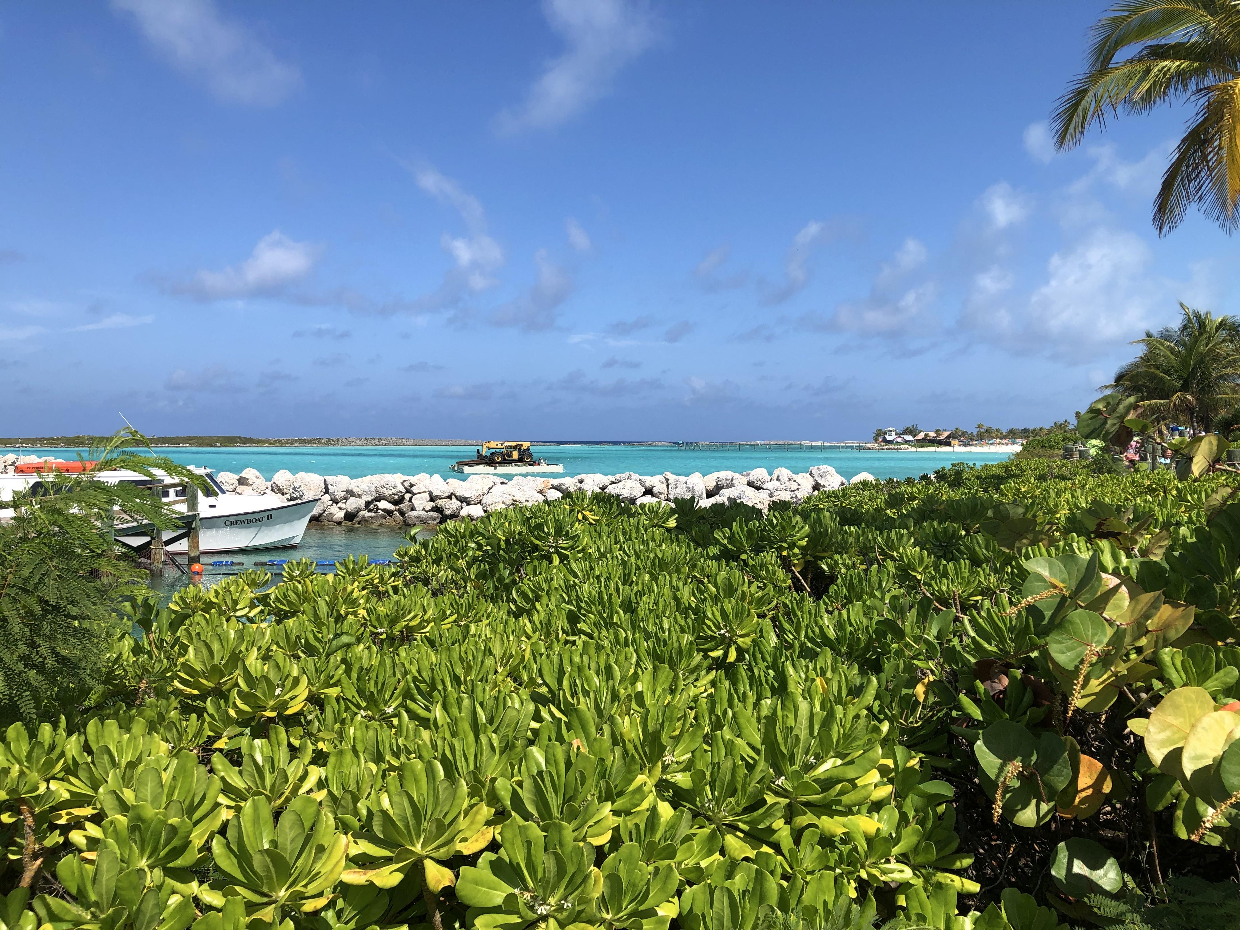 [Floride] Jour 6 : De retour à Castaway Cay – Partie 1 1
