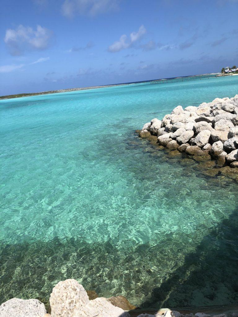[Floride] Jour 6 : De retour à Castaway Cay – Partie 1 17