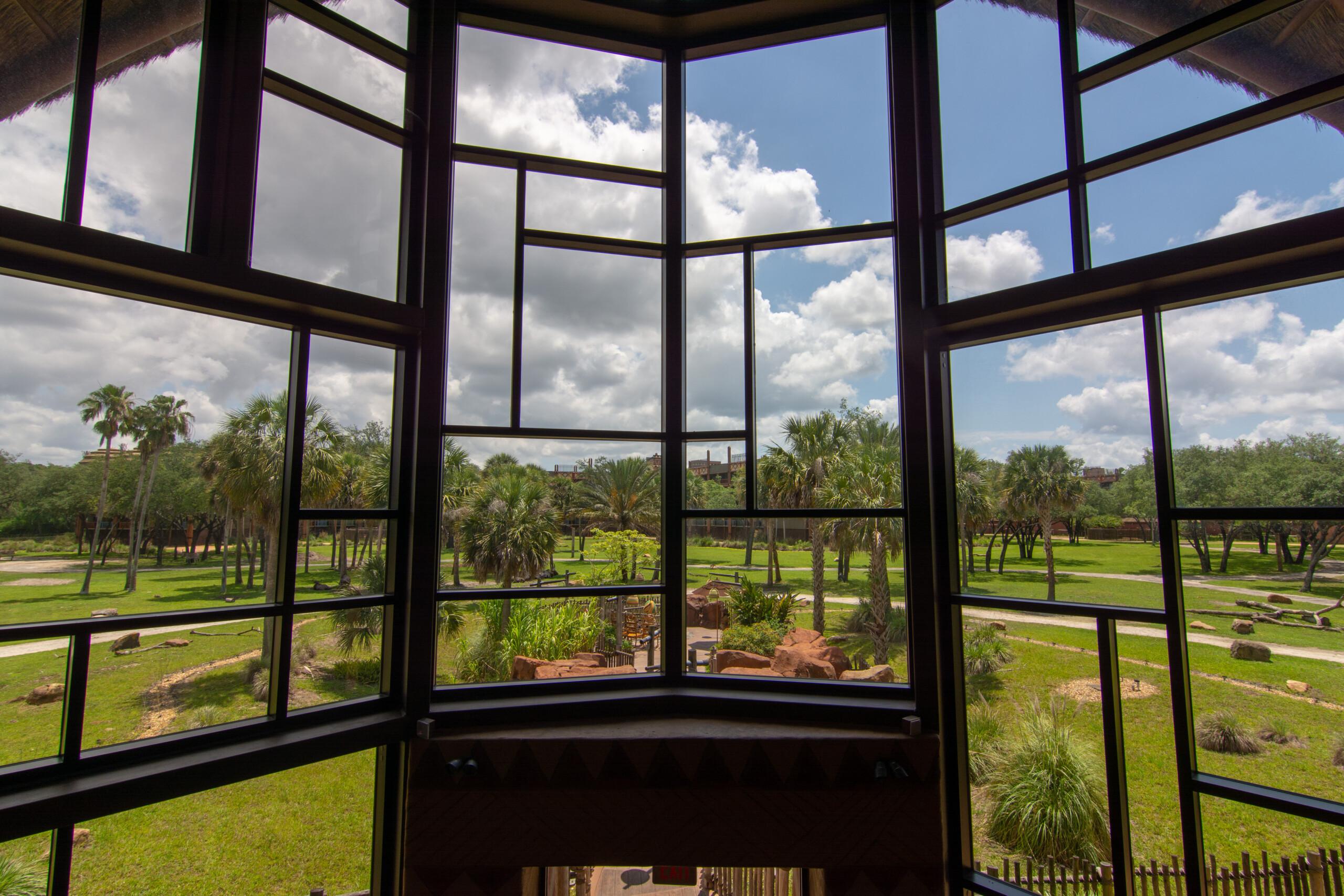 [Floride] Jour 10 : De retour à Animal Kingdom – Partie 2 5