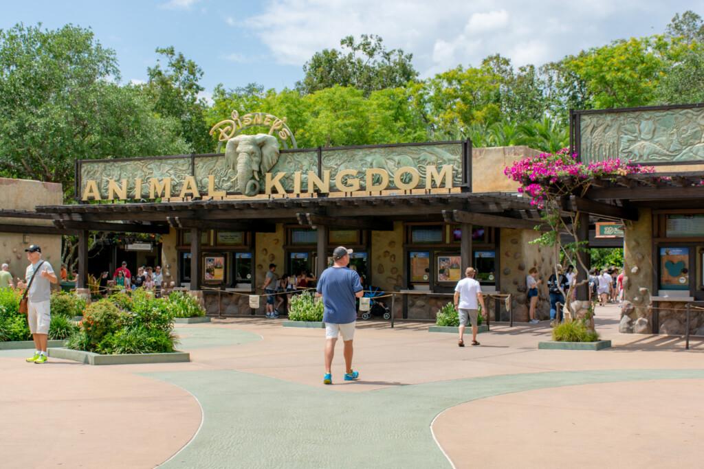[Floride] Jour 10 : De retour à Animal Kingdom – Partie 3 6