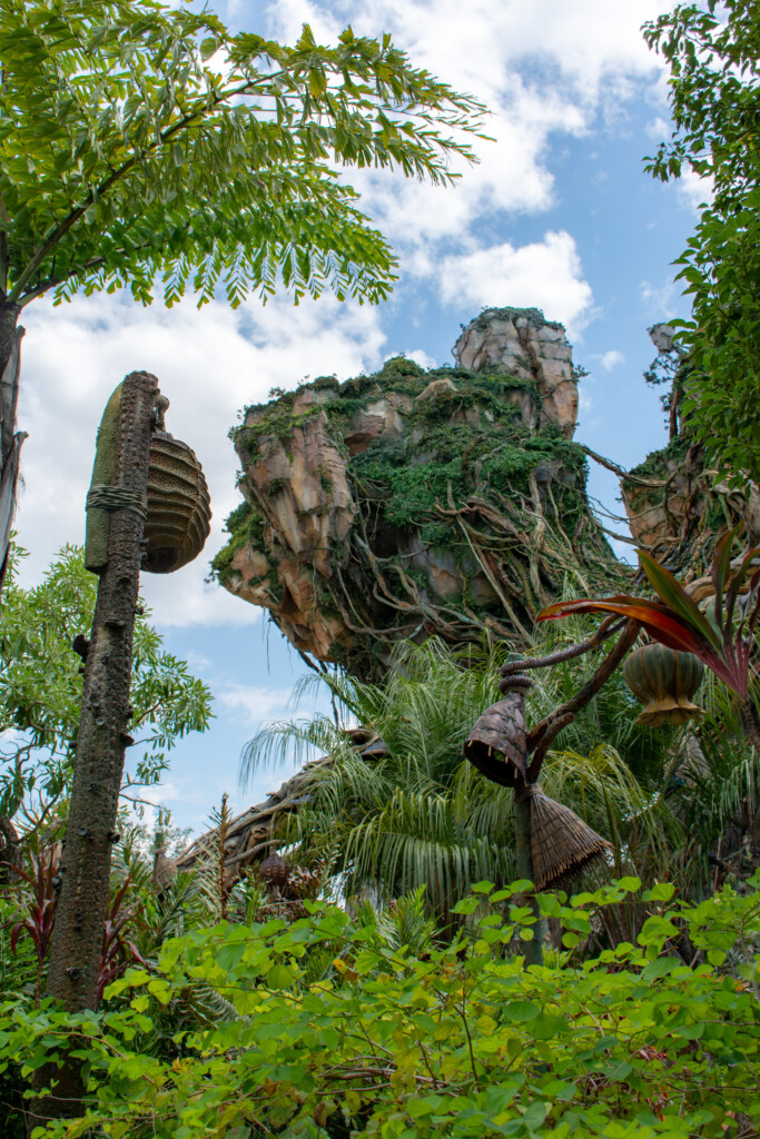 [Floride] Jour 10 : De retour à Animal Kingdom – Partie 3 9