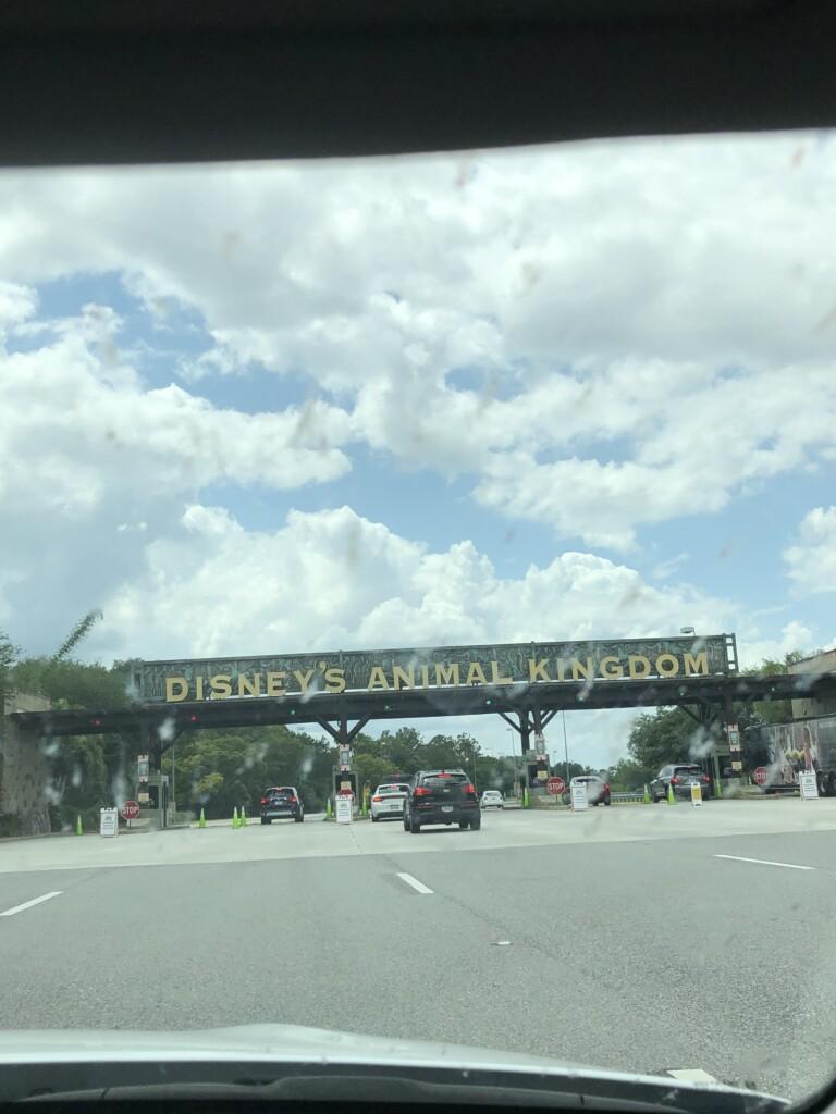 [Floride] Jour 10 : De retour à Animal Kingdom – Partie 3 2