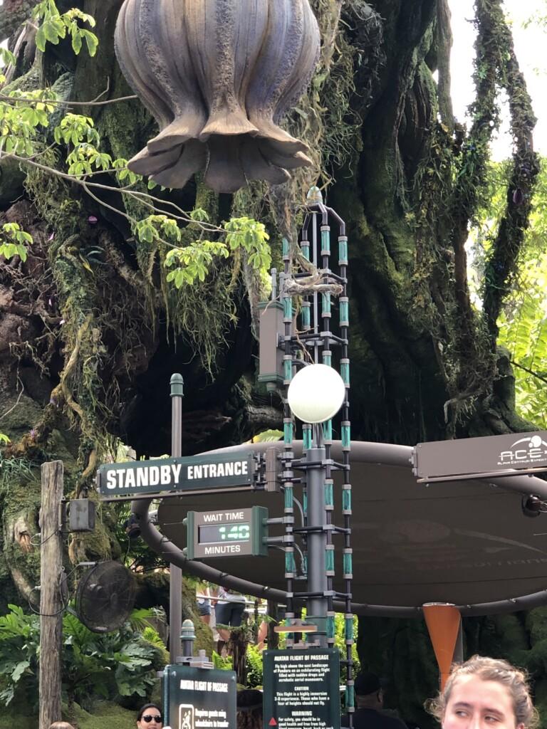 [Floride] Jour 10 : De retour à Animal Kingdom – Partie 3 11