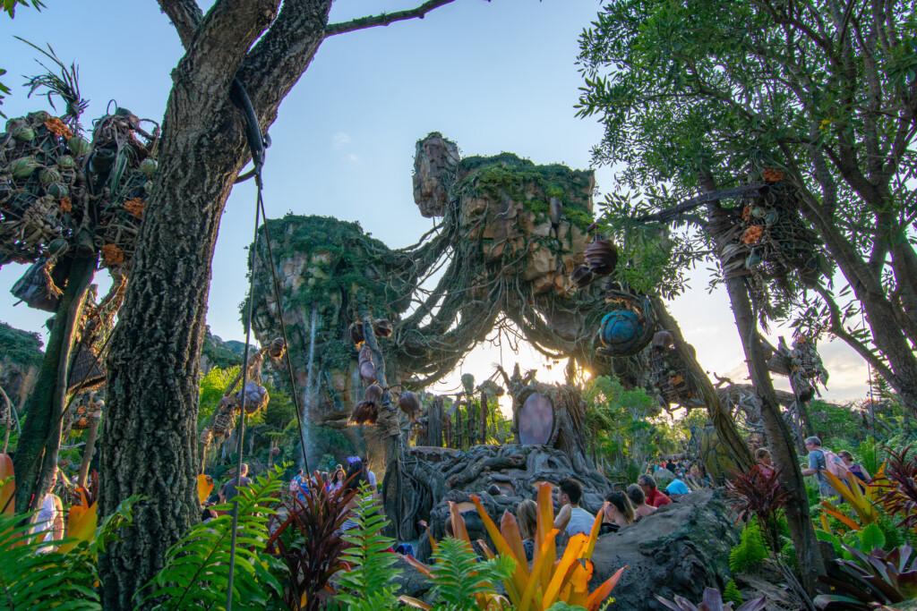 [Floride] Jour 10 : De retour à Animal Kingdom – Partie 4 12