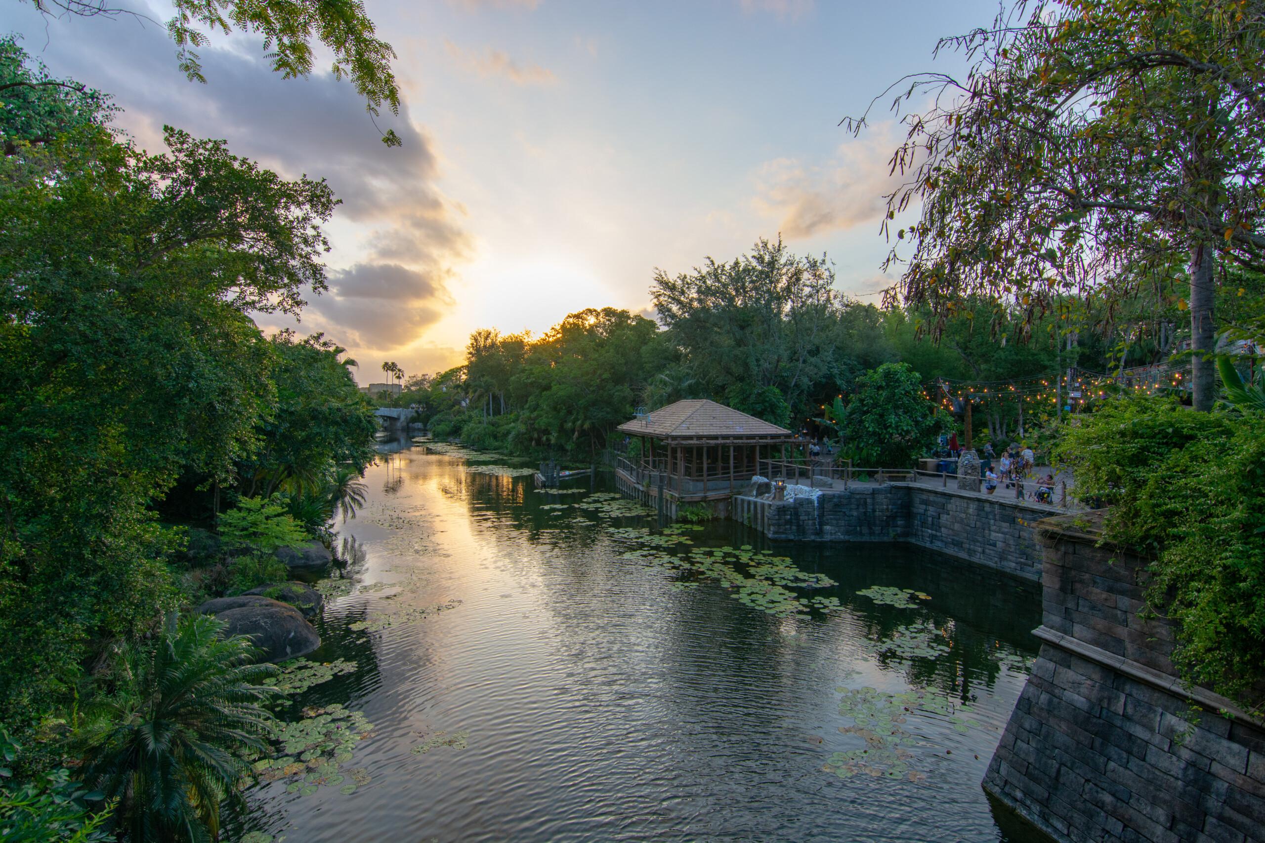 [Floride] Jour 10 : De retour à Animal Kingdom – Partie 4 8