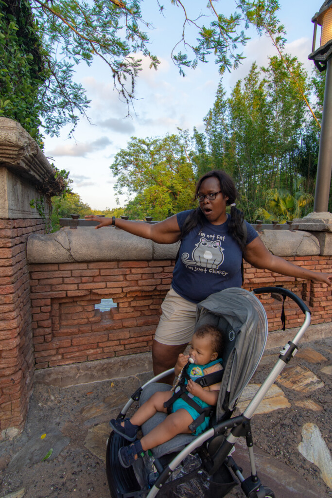 [Floride] Jour 10 : De retour à Animal Kingdom – Partie 4 18