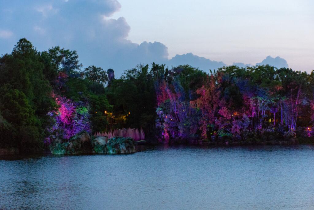 [Floride] Jour 10 : De retour à Animal Kingdom – Partie 4 29