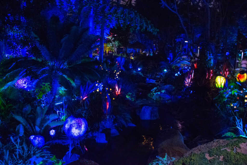 [Floride] Jour 10 : De retour à Animal Kingdom – Partie 4 37
